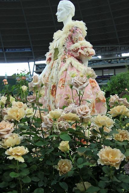 IMG_4116国際バラとガーデニングショー