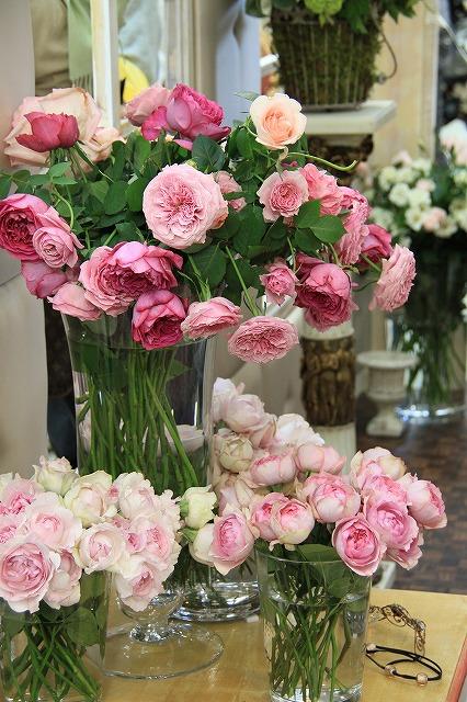 IMG_4147国際バラとガーデニングショー