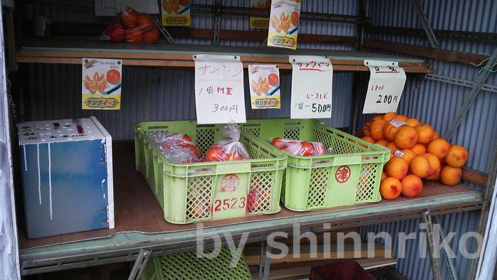 無人の販売所。サンクウィーンという津久見産柑橘