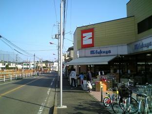海軍道路の桜1-001
