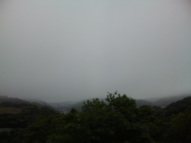 国際村-霧