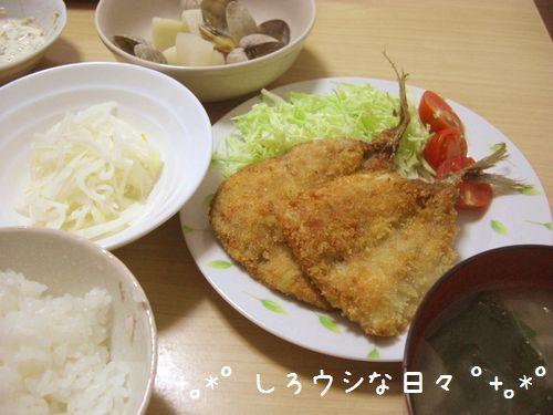 CIMG5046-blog.jpg