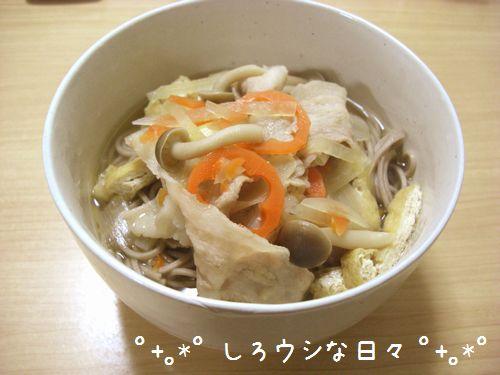 toshikoshisoba_2011.jpg