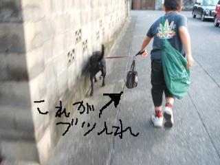 snap_shitatomousimasu_200910003242.jpg