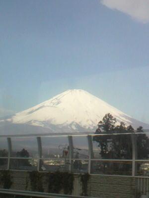 shirofuji.jpg