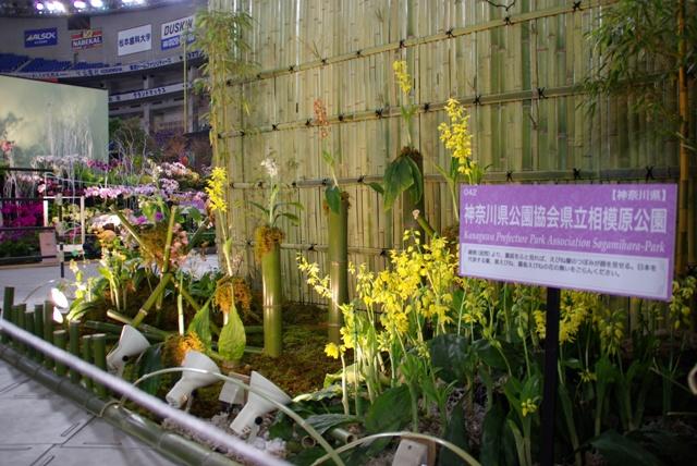 神奈川県公園協会 県立相模原公園