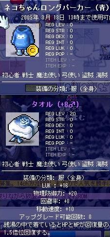 龍龍天流の装備5
