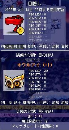 龍龍天流の装備8