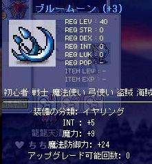 龍龍天流の装備9