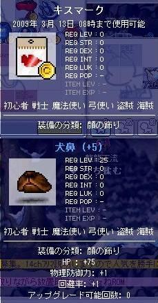 龍龍天流の装備10