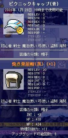 龍龍天流の装備11