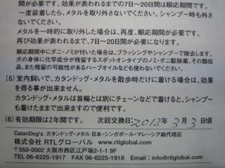 P1000151_20110304123016.jpg