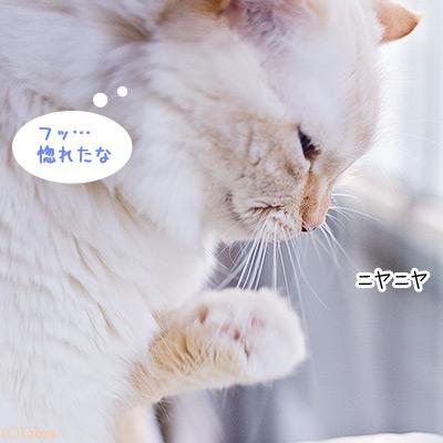 20120330_6.jpg