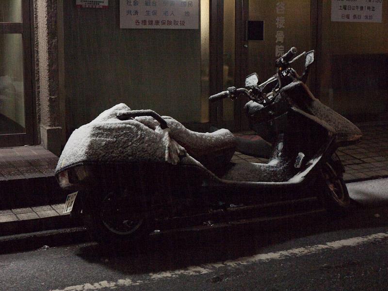 5_snow100201.jpg