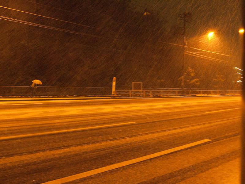 6_snow100201.jpg