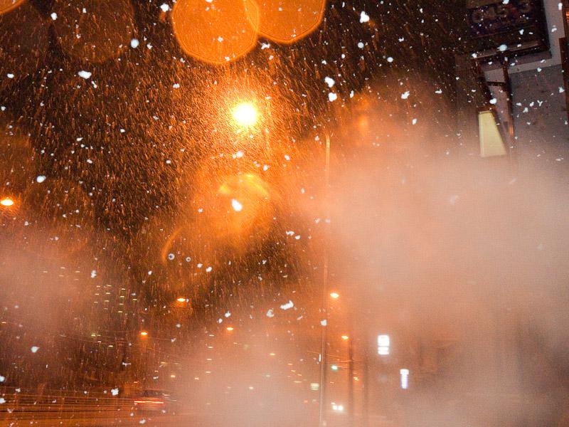 9_snow100201.jpg