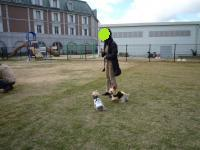 2009_1103_112556-P1030922_convert_20091105091704.jpg