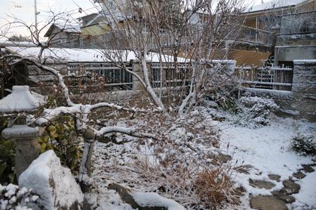 2年連続で雪~!