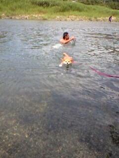 うり泳ぐ1