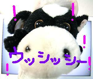 ushi02.jpg