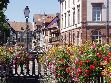 花で飾られた運河downsize