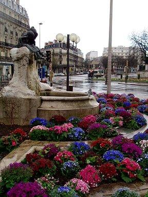 雨の街角を彩る花壇downsize