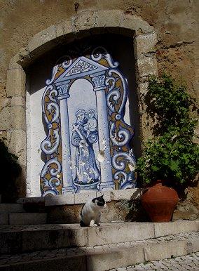 キリスト像の前でひなたぼっこの猫REVdownsize