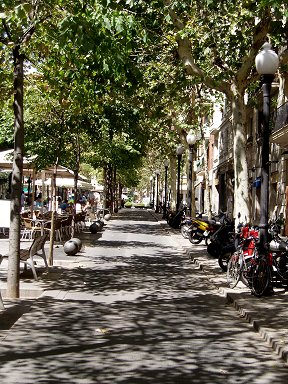 木漏れ日の散歩道、バルセロナの午後downsize