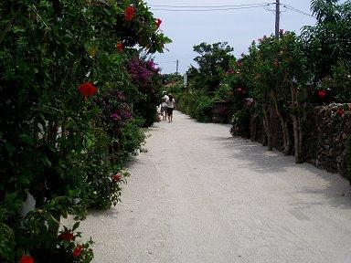 花の路downsize