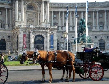 馬も一息、王宮前で客待ちの馬車REVdownsize