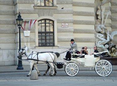 優雅な白馬ぼ馬車で歴史地区をまわるREVdownsize2