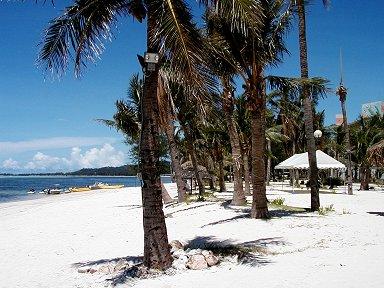 サンゴのかけらで出来た白い砂浜downsize
