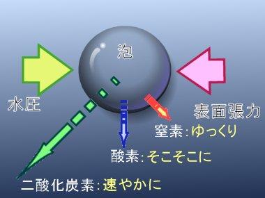 窒素が入った空気ならゆっくりと泡は消えてゆきます