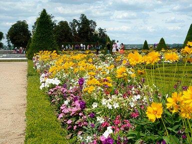 花いっぱいの植え込みを散策REVdownsize