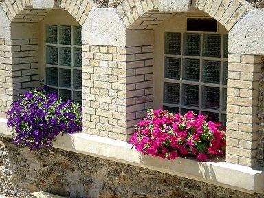 パッシーの窓辺の花downsize