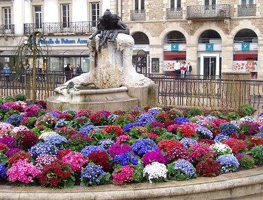銅像と桜草Dijon REVdownsize