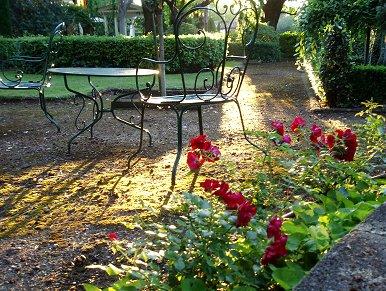 光が静かに庭に満ちてくるREVdownsize