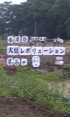 syobu03.jpg