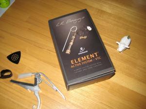 L.R.Baggs Element