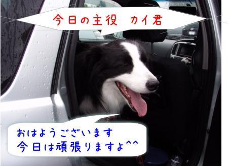 060701_20090607193838.jpg