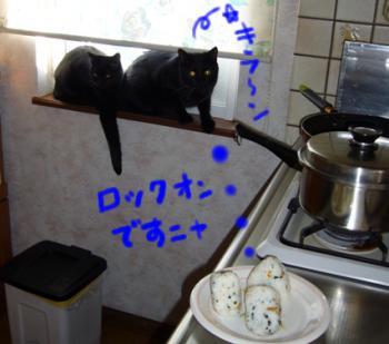 毎日のキッチン風景