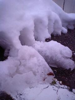 除雪水100117_1622~0001