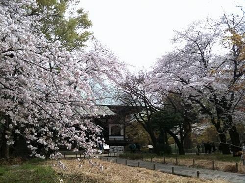 kuhonbutsu2011-4-1.jpg