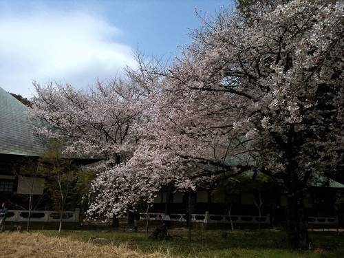 kuhonbutsu2011-4-3.jpg