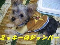 20050325172557.jpg