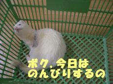 20050605125008.jpg