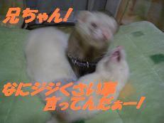 20050605125814.jpg