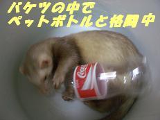 20050801181743.jpg