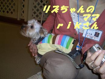 20051011181745.jpg