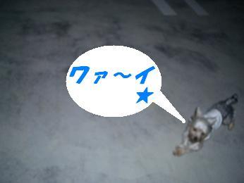 20051115150138.jpg